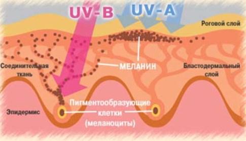 """Абонемент в вертикальный солярий в медцентре """"Roden"""" от 0,56 руб/мин."""