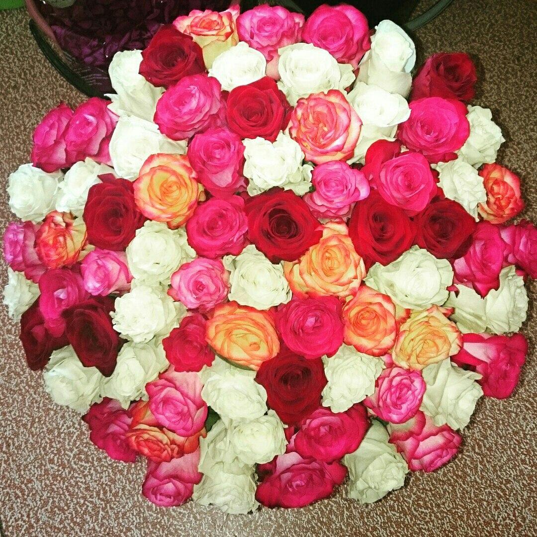 Розы (РБ, Эквадор) от 1,70 руб./шт.