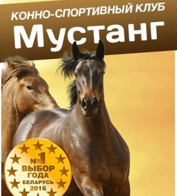 """Прогулка на лошадях всего от 12,50 руб. в конном клубе """"Мустанг"""""""