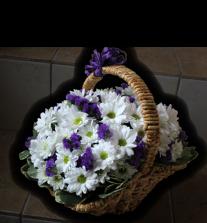 Альстромерии, розы от 2 руб./шт., букеты, орхидеи-фаленопсис за 19,50 руб./шт.
