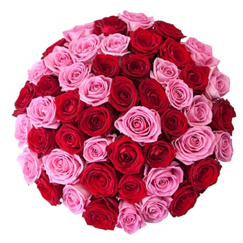 Букеты, цветы в коробках, свежие розы от 1,80 руб./шт.