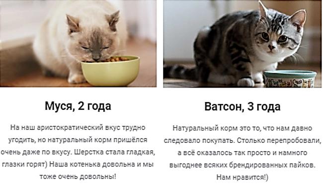 """Натуральный корм из курицы и индейки для кошек """"Foodcat"""" от 3,90 руб./1 кг"""