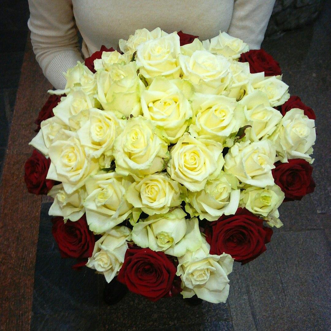"""Свежие розы, ромашковые хризантемы от 1,90 руб/шт. от """"Minskroses.by"""""""