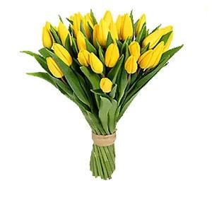 Тюльпаны от 1,20 руб/шт. Пушкинская и Немига
