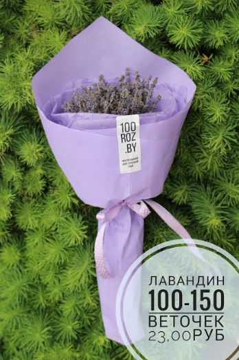"""Букеты и композиции, игрушки из живых цветов, розы в колбе, цветы от 1,80 руб/шт. от """"100roz.by"""""""