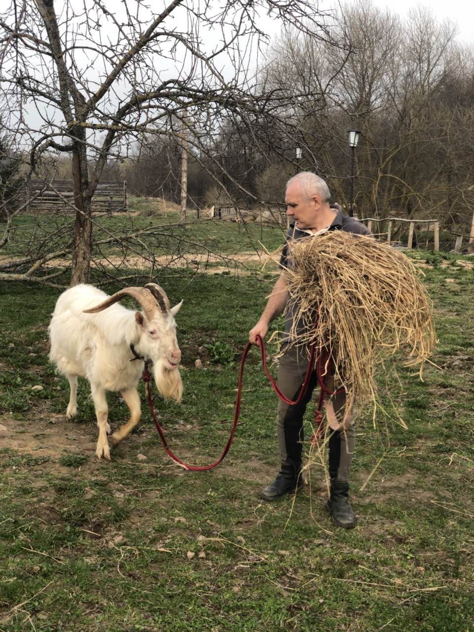 """Встреча с Дедом Морозом, экскурсия, кормление животных, катание верхом на ферме """"Манул"""""""