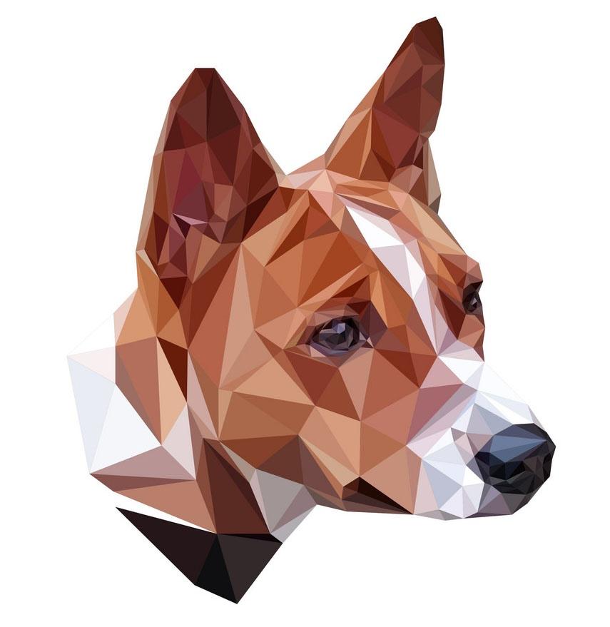 Групповые и индивидуальные абонементы по дрессировке собак от 7 руб/занятие