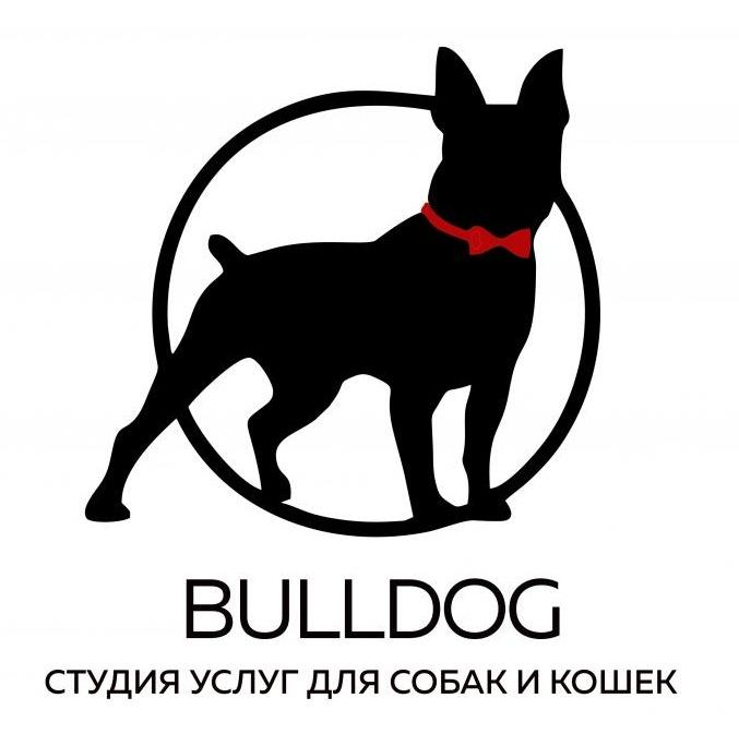 """Комплексный уход, гигиеническая стрижка для собак и котов от 17 руб. в груминг-салоне """"Bulldog"""""""