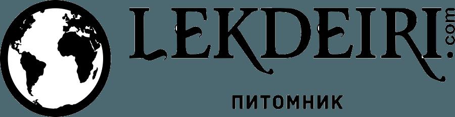 """Прогулка и фотосессия с собаками акита-ину от 25 руб/2 человека в питомнике """"Lekdeiri"""". Детям бесплатно!"""