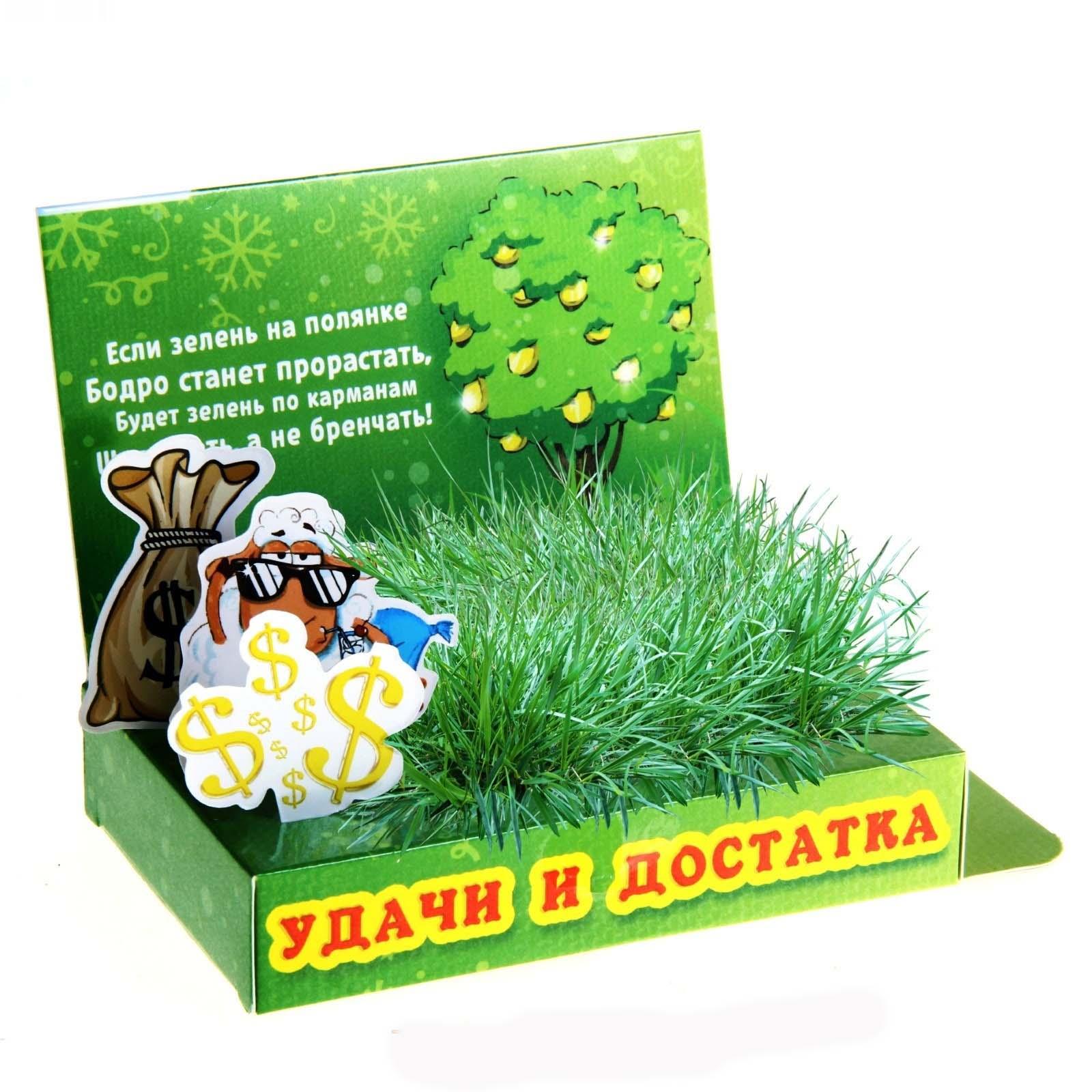 """Открытка """"растущая трава"""" всего от 2,90 руб."""