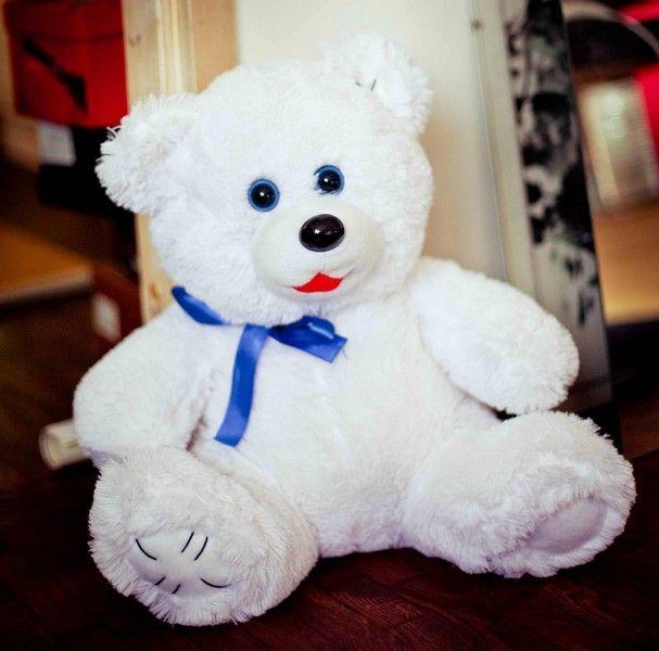 Большие медведи - отличный подарок от 26,50 руб.