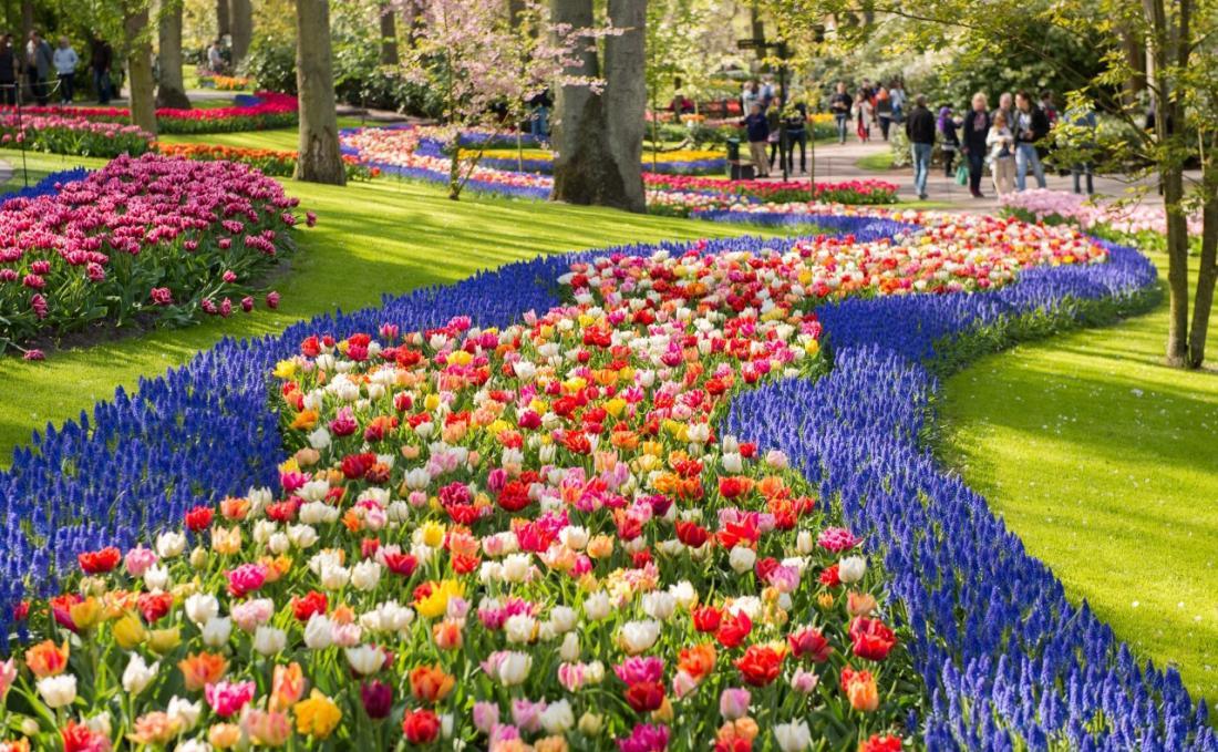 Цветочный Амстердам: Варшава-Прага-Амстердам (2 дня!)-парк цветов Кекенхоф от 189 руб/5 дней+бесплатная дегустация голландских сыров!
