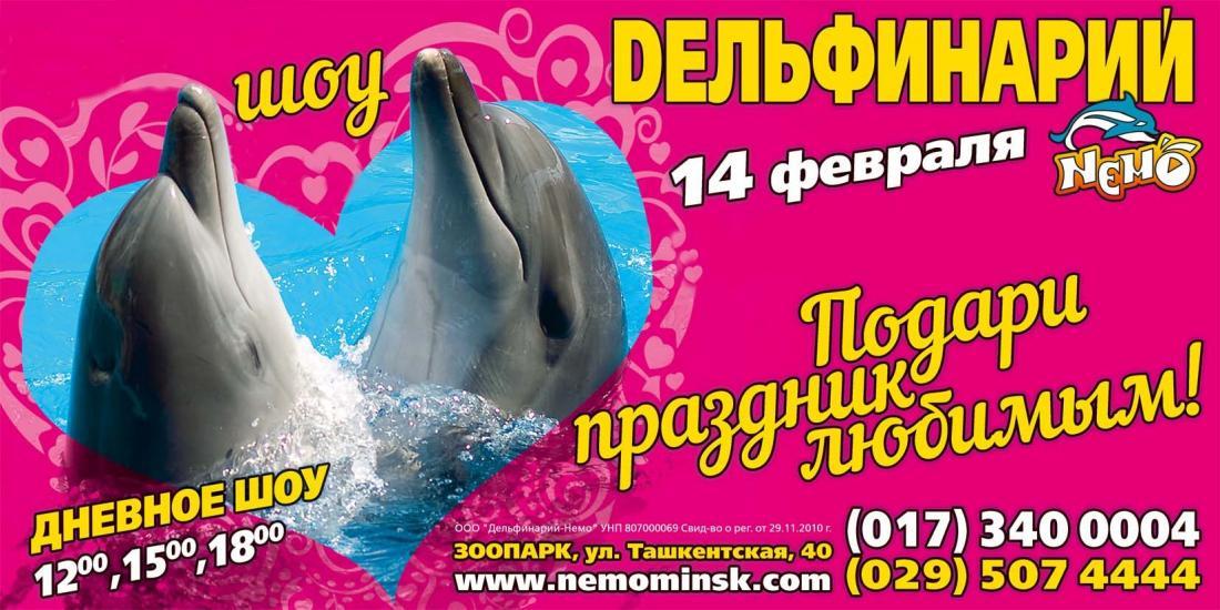 """14 февраля дневное шоу в дельфинарии """"Немо"""" за 12,50 руб."""