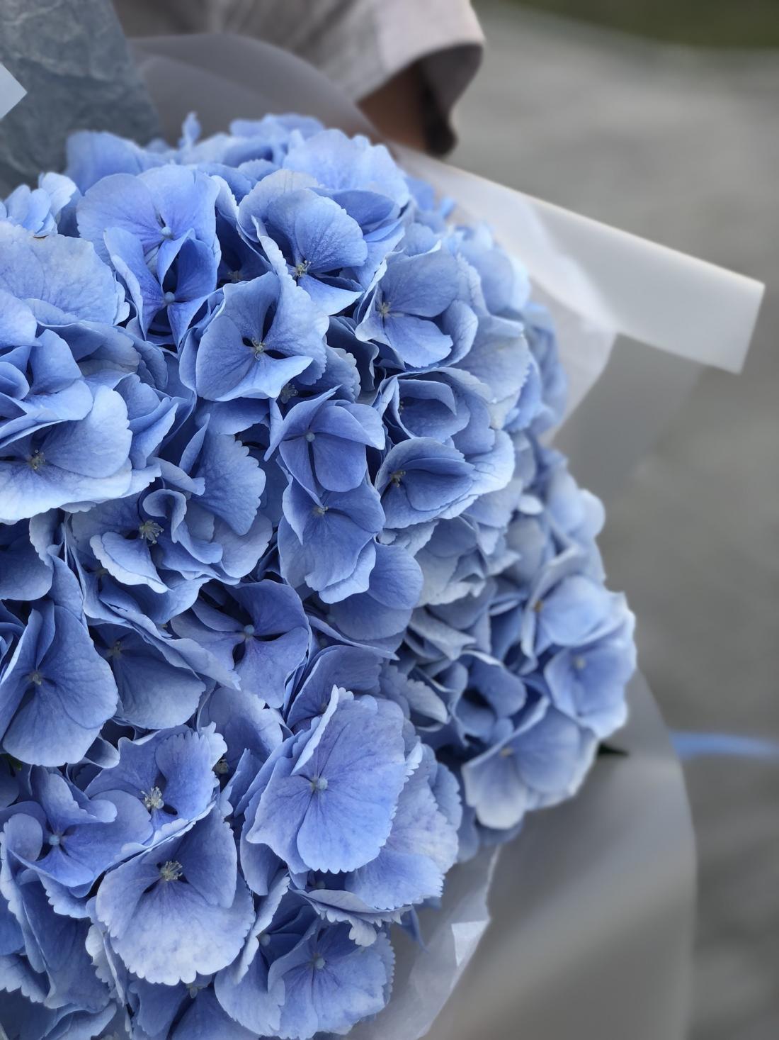 """Авторские коробки с цветами (Голландия, Эквадор) всего от 25 руб. от """"Posies flower shop"""""""