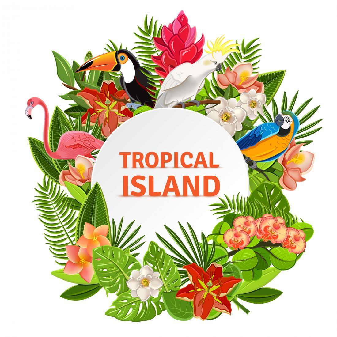 "Экзотические, релакс-массажи и массажи для похудения от 8 руб. в Spa-салоне ""Tropical Island"""