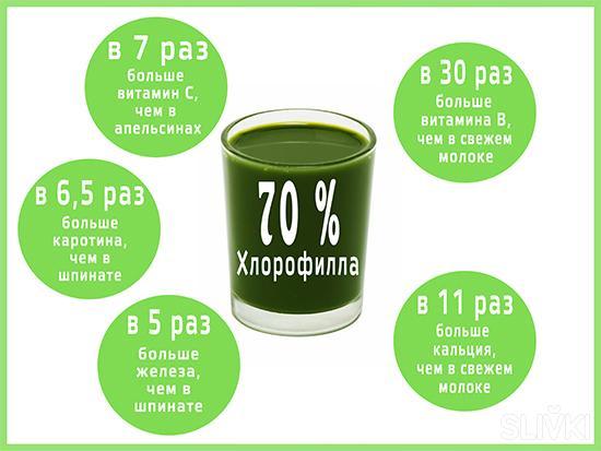 """Укрепляем здоровье с """"Витграсс"""": комплекс витаминов со скидкой 50%"""