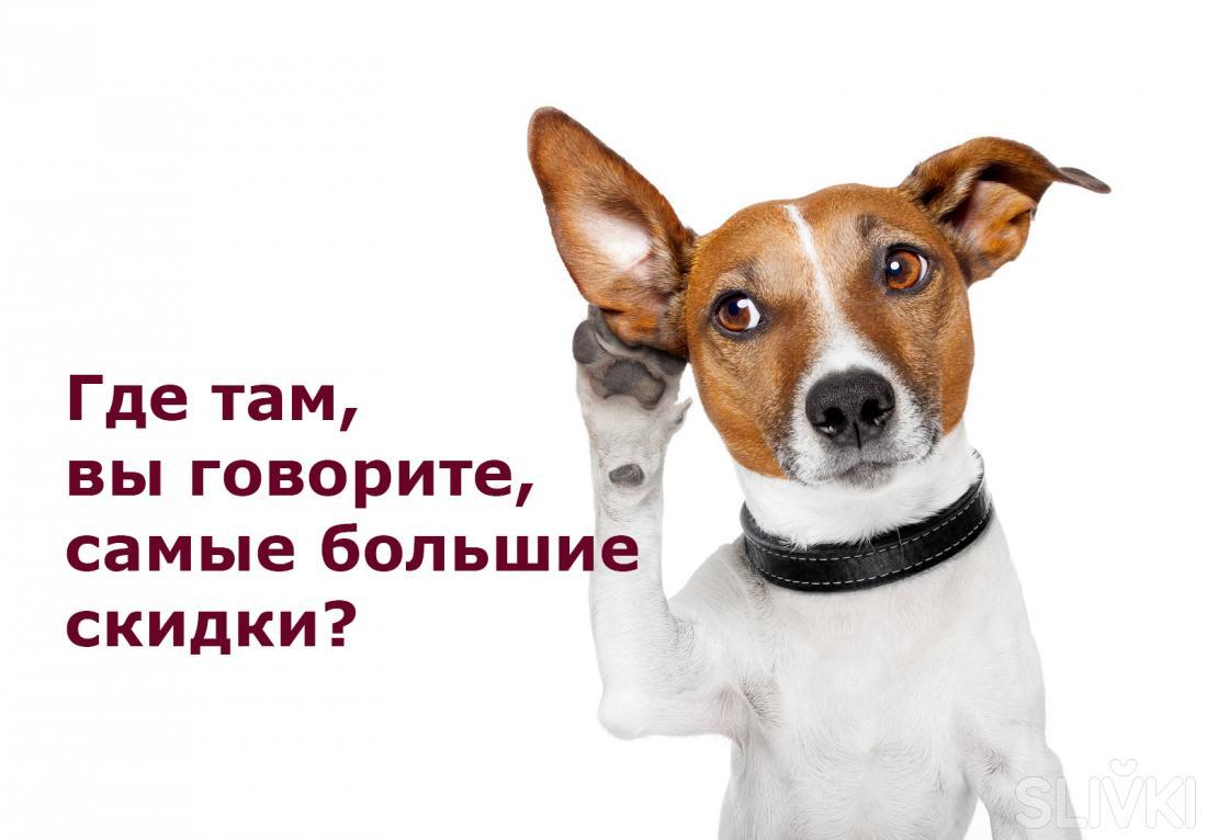 Универмаги Минска весь январь  дарят  скидки до 50%