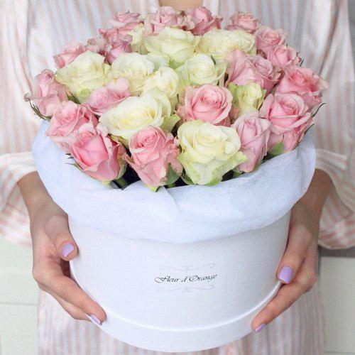 Заказ цветов с доставкой 8 марта минск горшечные цветы на стол купить