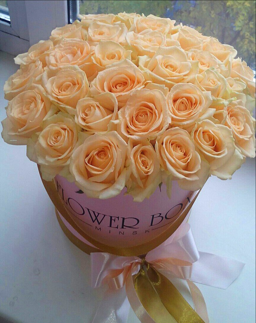 розы2