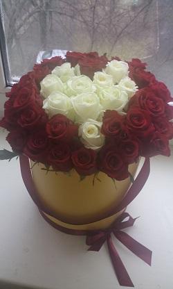 розы14