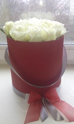 розы19