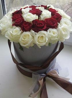 розы20