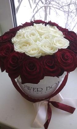 розы27