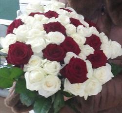 розы32