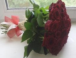 розы36