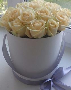 розы7