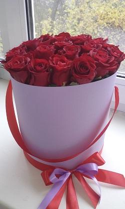 розы9