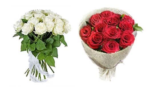 Купить розы оптом по низким ценам 60 см в гомеле где купить прикольные парики для розыгрышей
