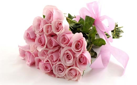 Живые цветы из эквадора где можно купить розы оптом в уссурийске